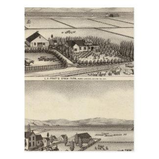 Pratt, Stewart farms Postcard