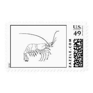 Prawn Art Postage Stamps