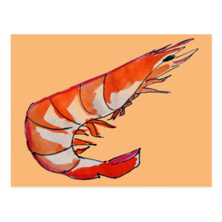 Prawn shrimp seafood kitsch art postcard