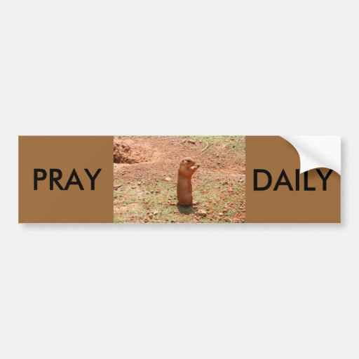 PRAY, DAILY BUMPER STICKERS