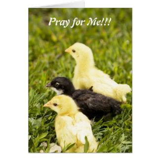 Pray for Me!!! Card
