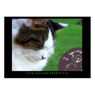 Pray Life Lessons From a Cat ACEO Art Cards Business Card Template