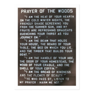 prayer of the woods post card