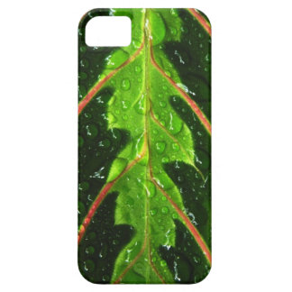 Prayer Plant Leaf and Rain Drops iPhone Case Mate