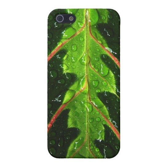 Prayer Plant Leaf Phone Case