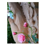 Prayer Roses Postcard