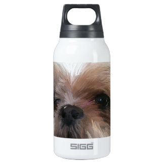 prayer 10 oz insulated SIGG thermos water bottle