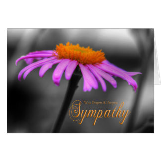 Prayers and Sympathy Purple Orange Coneflower Card
