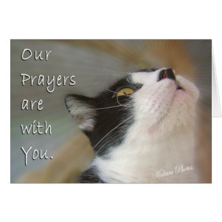 Prayers for You Greeting Card