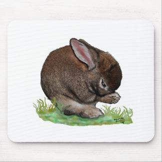 Praying Bunny Mouse Pad