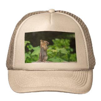 Praying Chipmunk Trucker Hat