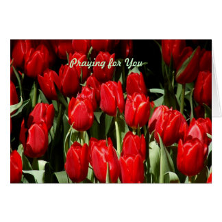 Praying for you greeting card