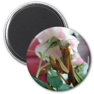 Praying Mantis 2 Inch Round Magnet