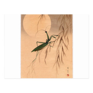 Praying Mantis and the Moon Japanese Art c. 1800s Postcard