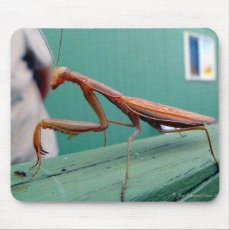 Praying Mantis & ant mousepad