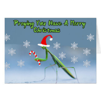 Praying Mantis Christmas Card W/ Personalized Name