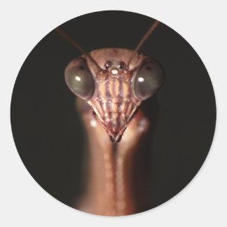 praying mantis classic round sticker
