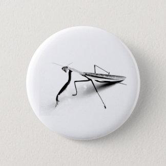 Praying Mantis Collection Pinback Button