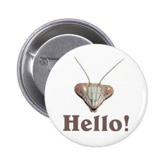 Praying Mantis Hello Pinback Button