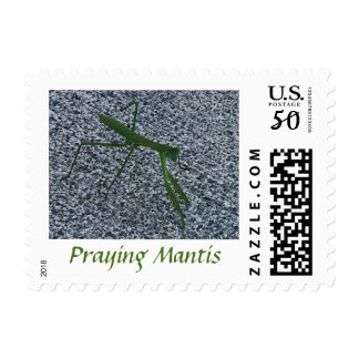 Praying Mantis Insect Walking on Sidewalk Stamps