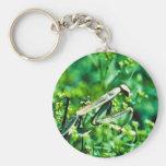 Praying Mantis Key Chain
