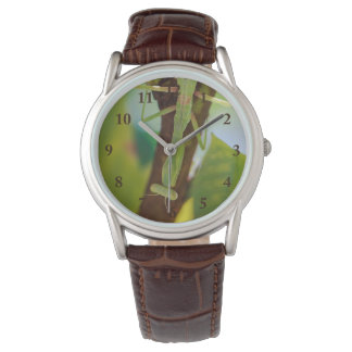 Praying Mantis Leather Watch