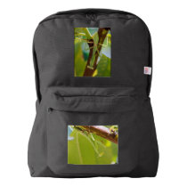 Praying Mantis Macro American Apparel Backpack