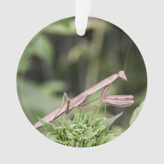 Praying Mantis Ornament