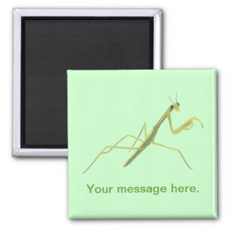 Praying Mantis Painting Your Words Magnets