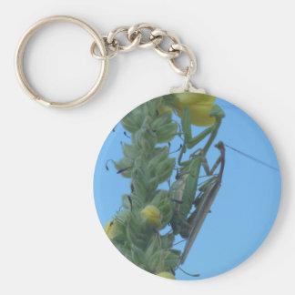 Praying Mantis Pair on Mullein Plant Keychain