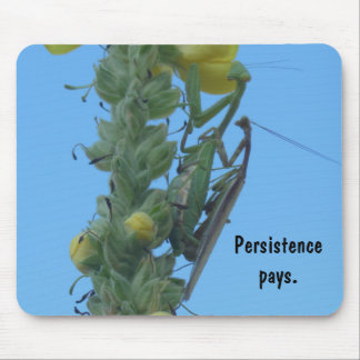 Praying Mantis Pair on Mullein Plant Mouse Pad