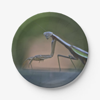 Praying Mantis Paper Plate 7 Inch Paper Plate