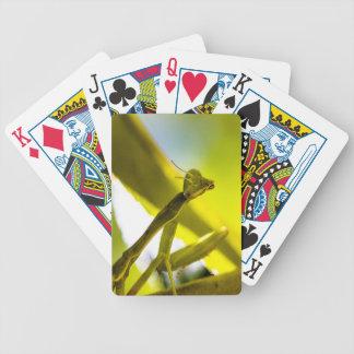 Praying Mantis Playing Cards