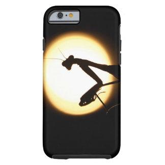 Praying Mantis Silhouette Tough iPhone 6 Case
