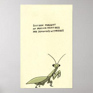 praying mantis trivia poster