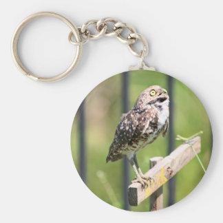 Praying Owl keychain