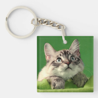 Praying Siamese Cat Keychain