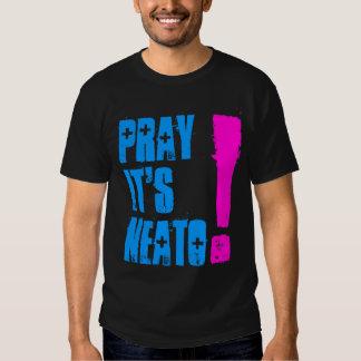 PrayItsNeato! ladies T Shirt