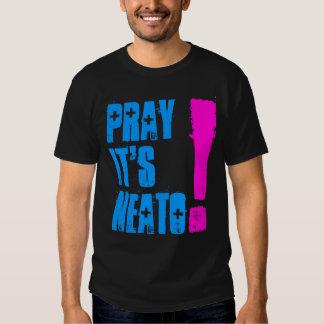 PRAYIT'SNEATO! SHIRT