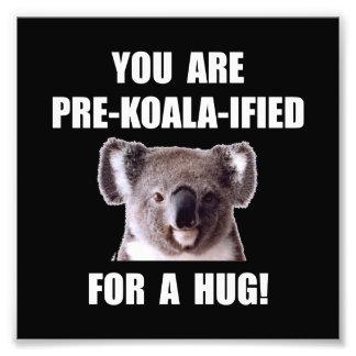 Pre Koala Qualified Hug Photo Print