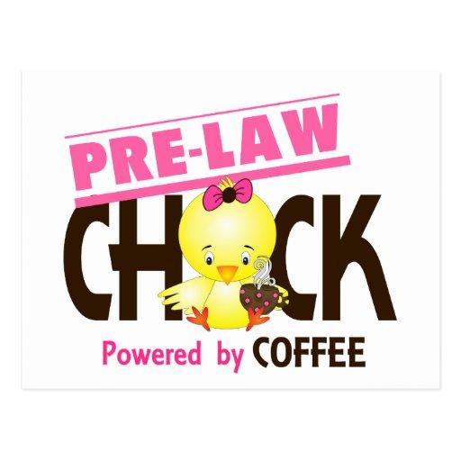 Pre-Law Chick 4 Postcard