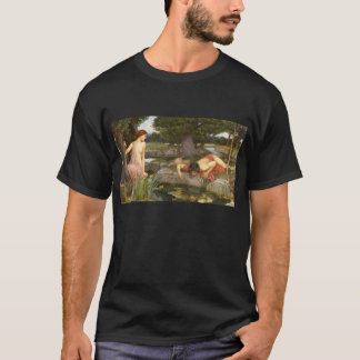 Pre-Raphaelite Art Echo and Narcissus by Waterhous T-Shirt