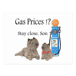 ¡Precios de la gasolina de los terrieres de Tarjeta Postal