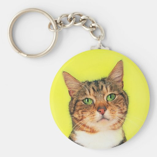 Precious Cat and Kitten Photos, Gifts - Customize! Basic Round Button Keychain
