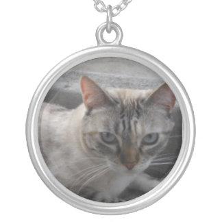 Precious Cat Necklace