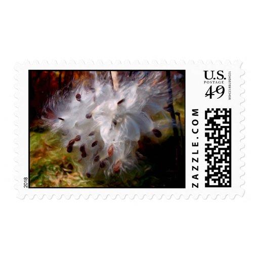 Precious Cotton Stamp