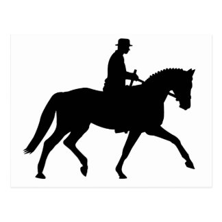 precious dressage horse with rider postcard