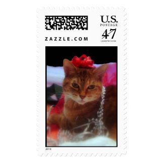 """Precious Gift"" Cat Photography Holiday Postage"