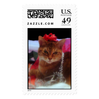 """""""Precious Gift"""" Cat Photography Holiday Stamp"""