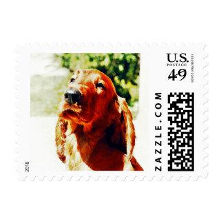 Precious Irish Setter Puppy Postage